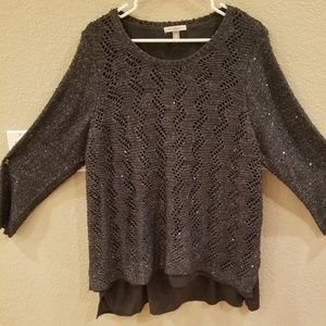 Sparkly Dress Barn Winter Sweater